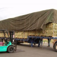 Loading Bales the Ezy Way