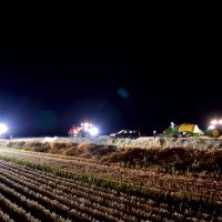Harvest time at night