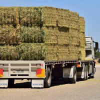 Bales loaded on the truck ready for delivery