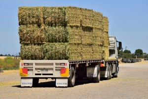 Bales_On_Truck~