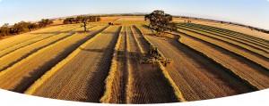 beautiful landscape cropping image